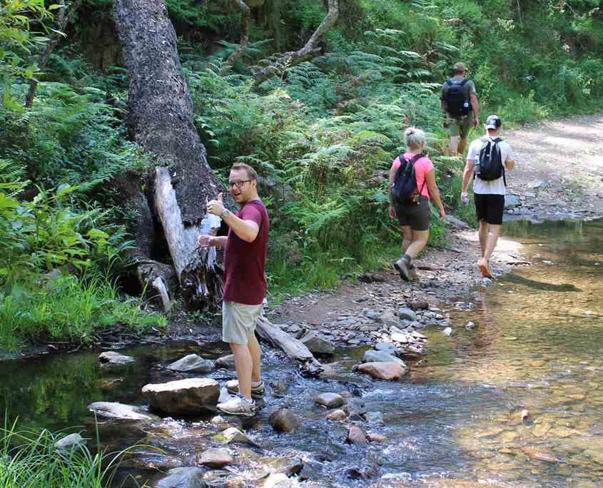 Walking through Alum Creek on the 6 Foot Track
