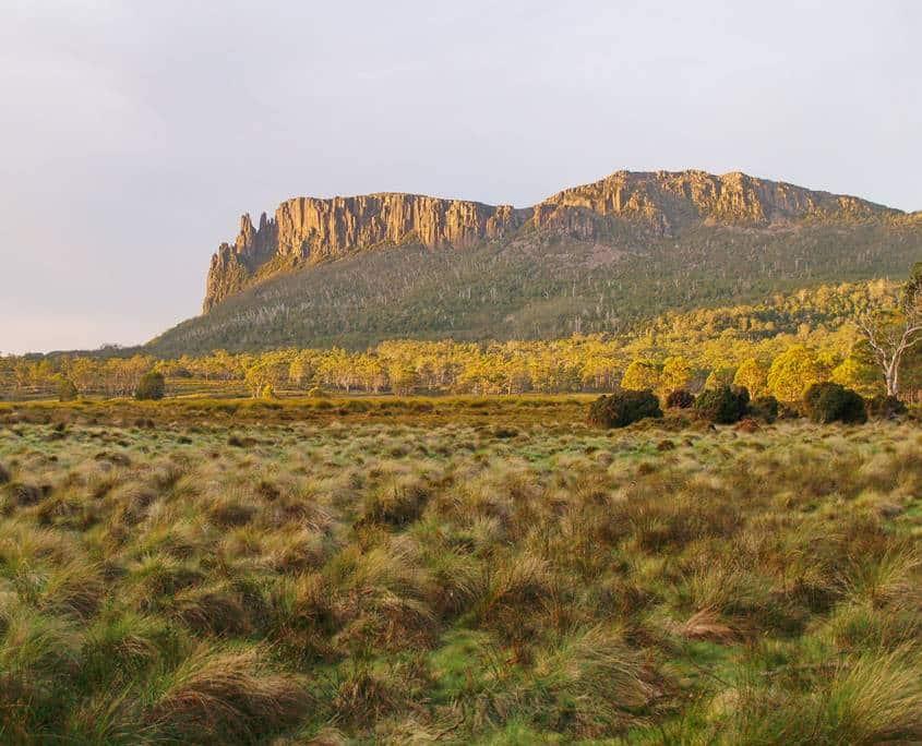 Mount Oakleigh viewed from Pelion Plains