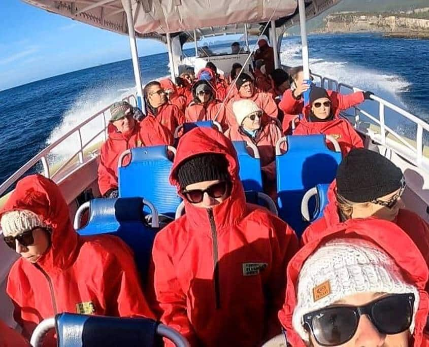 Pennicott Tasman Island wilderness cruise